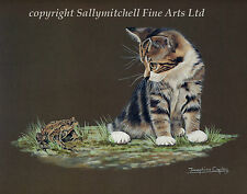 Paintings/Posters/Prints Cat Collectables