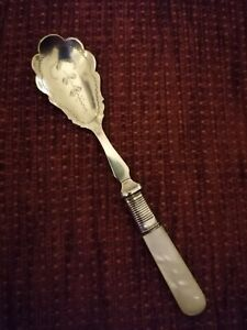 Beautiful Spoon/Mother of pearl handle