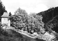 AK, Großbreitenbach Thür., Heim Bad Finkenmühle, 1972