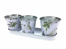windowsill herb planter 3 pots on a tray . planter with herb print