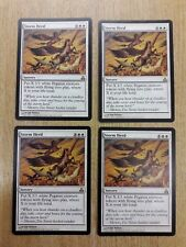 Magic The Gathering Cards - Guildpact - Storm Herd x 4