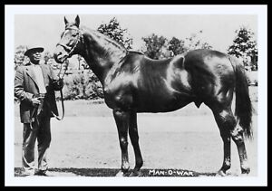 Vintage Man O War w Beloved Groom Will Harbut 11x14 Double Matted 8x12 print