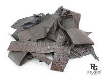PELGIO Genuine Crocodile Skin Leather Hide Pelt Scraps 100 g. Brown Free Ship