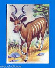 ANIMALI - Lampo 1964 - Figurina-Sticker n. 159 - KUDU -New