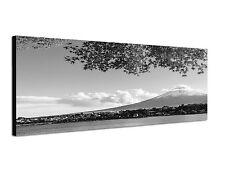 150x50cm Panoramabild Schwarz Weiss - schönes Panorama Japan Berg Fuji Vulkan