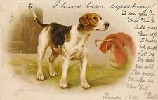 POSTCARD   ANIMALS   DOG   FOXHOUND     Tuck