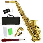 School Professional Paint Gold Alto Eb Sax Saxophone w/Case, Mouthpiece, Carekit