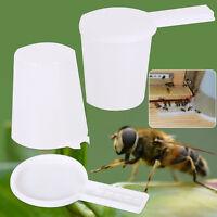 1pc Bee Watering Feed Beekeeping Honey Entrance .Feeder Nice SALE