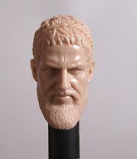1/6 scale Custom Blank Head Sculpt Roar 300 King Leonidas for HT Muscular Body