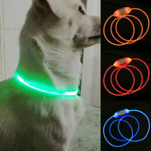 Rechargeable USB Waterproof LED Flashing Light Up Band Safety Pet Dog Collar Hot
