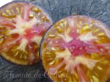 10 graines de tomate très rare ANANAS BLEU Jolie découverte heirloom tomato