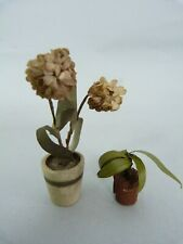More details for two antique german gottschalk dolls house plants flowers with paper leaves