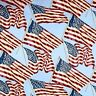 Quilts of Valor Patriotic Flags Waving on Sky Blue Cotton Fabric Fat Quarter