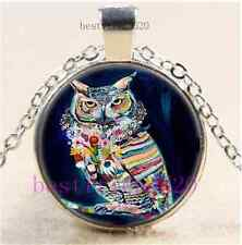 Colorful Owl Photo Cabochon Glass Dome Silver Chain Pendant Necklace