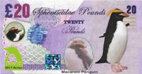2017 Penguin Series 🐧 MACARONI PENGUIN 🐧 20 Spheniscidae Pounds 🐧Fantasy Note