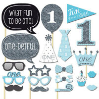 20pc Baby Boy Girl Shower Photo Booth Props Blue Pink 1st First Birthday Party