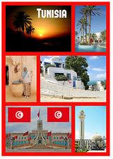 TUNISIA - SOUVENIR NOVELTY FRIDGE MAGNET - SIGHTS / FLAGS - BRAND NEW - GIFTS