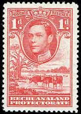 Scott # 125 - 1938 - ' George VI, Cattle and Baobab Tree '