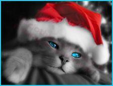 CUTE CHRISTMAS CAT IN SANTA HAT T-SHIRT - MENS WOMENS KIDS S TO 5XL