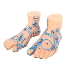 Foot Acupuncture Model 1 Pair 13 Cm Pvc Foot Massage Acupoint Reflection Zone