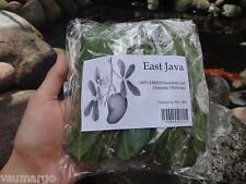 100% Dried Clean Soursop Leaf (Annona Muricata)