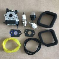 Carburetor 308480001 WYC-7 WYC-7-1 For Homelite Toro 51946 51957 51958 51972
