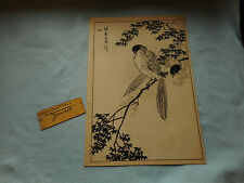 1800s  Japanese Woodblock Print Signed ( Birds On a Branch )