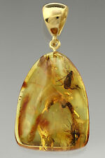 2 Fossil CADDISFLIES Inclusion BALTIC AMBER Gold Plated Pendant 5.4g p160921-13
