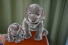 FRISBEE the Weimaraner DOG  - Ty Beanie Baby and BUDDY - MWMT