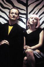 Lost in Translation Bill Murray Scarlett Johansson in zebra elevator 18x24Poster