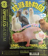 Kaiyodo Capsule Q Museum Unique Animal Zoo Mini figure x5 pcs set Japan