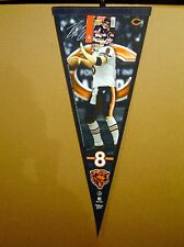 Rex Grossman Chicago Bears NFL Football Player Pennant