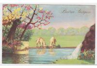 A.Niedrig Postkarte Fp Nmm Ostern Park Wiederaufleben Schafe Lämmer Bäume in