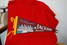 Vintage The Cascades Sparks Foundation Jackson Michigan Felt Pennant