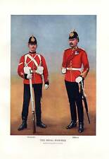 1900 BOER WAR PRINT ~ THE ROYAL MARINES CORPORAL & OFFICER