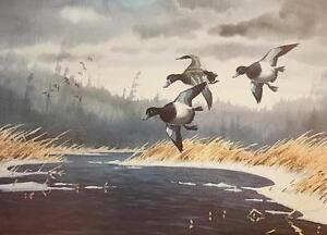 Les Kouba Bluebill's Duck Art Print 18 x 13