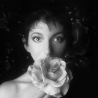 "Kate Bush : Remastered in Vinyl II VINYL 12"" Album Box Set 4 discs (2018)"
