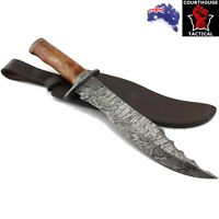 Handmade Bowie Knife, Damascus Blade, Tinted Camel Bone Handle, Leather Sheath
