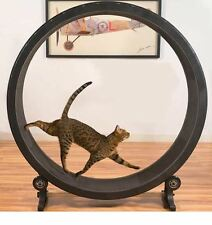 Cat Exercise Wheel Sturdy Lightweight Workout Machine Anti Catch Foam Surface
