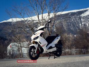 Speedex Charger 50 Moped 50cc Scooter Roller LED   /  Sonderpreis Netto 1415,-