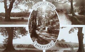 SHEFFIELD, Graves Park Vintage Postcard,
