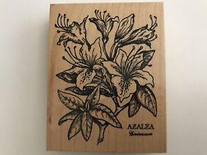PSX Azalea K 015 Rubber Stamp Flower Latin Botanical Big Vintage RARE 1992 USA