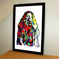 Janis Joplin Big Brother Singer Blues Rock Music Poster Print Wall Art 11x17