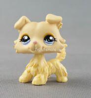 LPS Littlest Pet Shop #1194 Figure Yellow Collie Dog Purple eyes Girl Toys