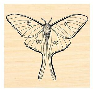P124 Luna moth Rubber Stamp