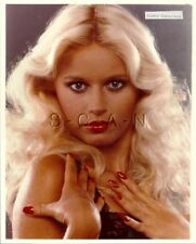 Original Vintage 1990s Nude Large (8 x 10) Photo- Blond Beauty- Black Nightee