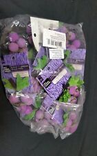 All Living Things Bunch 'O' Grapes Wood Chew for small animals Lot of 12 New