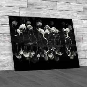 Flamingos Standing Mirrored In Lake Black White Canvas Print Large Picture Wall