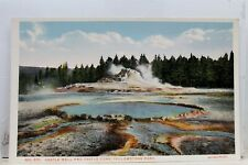 Yellowstone National Park Castle Cone Well Postcard Old Vintage Card View Post