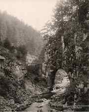 Elchlepp Joh., Allemagne, Schlüchtthal, Schwarzwald, Untere Partie  vintage phot